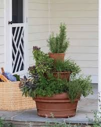 potted herb garden ideas garden design ideas