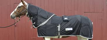equine products respond systems
