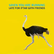 Ostrich Meme - malaysians brands fill social media with hilarious runaway