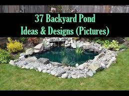 Backyard Ponds Ideas 37 Backyard Pond Ideas Designs Pictures