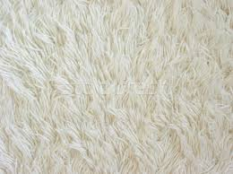 white carpet texture stock photo elena elisseeva elenaphoto