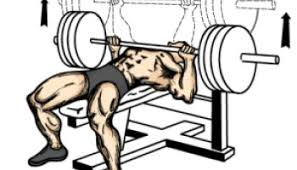 Seated Bench Press Seated Barbell Military Press For Shoulder Workout