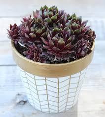 Garden Craft Terra Cotta Marker - 10 upscale ways to make over terra cotta pots