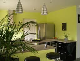 cuisine verte anis decoration cuisine vert anis