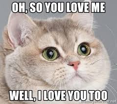 Love You Too Meme - oh so you love me well i love you too heavy breathing cat no