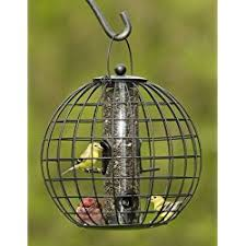 best bird feeders reviews best backyard bird feeder feeding