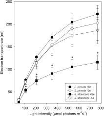 molecular mechanisms of selenium tolerance and hyperaccumulation