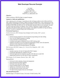 programmer resume objective web developer resume objective ilivearticles info web developer resume objective example 2