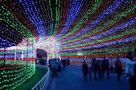 best christmas lights in america popsugar smart living