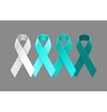 teal ribbons duotone teal ribbons ovarian cancer awareness vector image