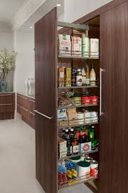 11 best perfect pantries images on pinterest kitchen designs