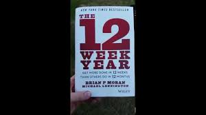 the 12 week year book the 12 week year book review
