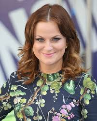 auburn brown hair color pictures amy poehler dyes her hair auburn brown auburn hair colors