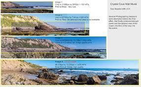 crystal cove 48ft x 8ft wall mural jim tarpo photography click to view larger