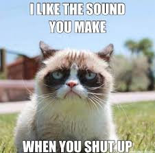 Image 9 Best Grumpy Cat - best grumpy cat meme 28 images 9 best grumpy cat memes 1 grumpy