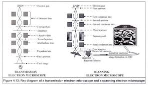 working principle of a electron microscopes with diagram