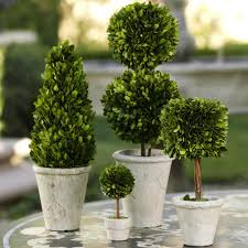 Fake Plants For Home Decor Decorating Fill Your Garden With Wonderful Topiaries For Garden