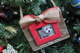 five great christmas gifts for dogs and dog owners gone mom