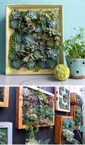 Vertical Succulent Garden Indoor - succulents in a cupcake stand cupcake stands and sunshine