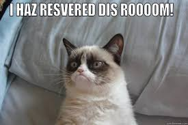 Conference Room Meme - conference room cat quickmeme