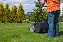 Landscaping Jacksonville Nc by Lawn Care Jacksonville Nc Lawn Service U0026 Ice Removal