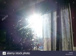the winter sun shines through a window in a residentail home in
