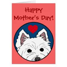 mothers day westie cards greeting photo cards zazzle