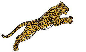 jaguar icon home