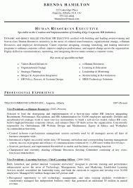 Sample Resume Of Pharmacist by Pharmacy Sample Resume Experience Resumes