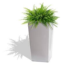Self Watering Indoor Planters by Amazon Com Algreen 11404 Self Watering Square Modena Planter 22