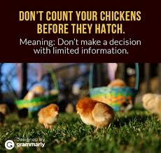 Count Your Chickens Before They Hatch Meaning 6 Idioms Explained