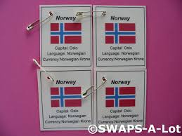 Flag Of Oslo Mini Norway Flag Capital Thinking Day Swaps Kit For Kids