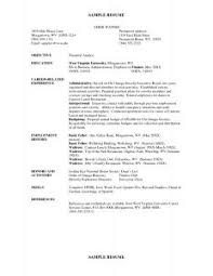 Great Resumes Examples by Examples Of Resumes 10 Good Example Resume Letter 2016 Essay And