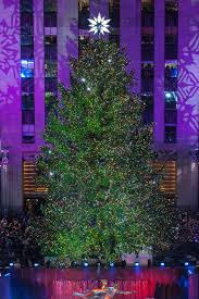 lighting of the tree rockefeller center 2017 rockefeller center 2017 rockefeller center christmas tree and