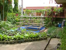 garden ideas small urban vegetable garden design with rectangular