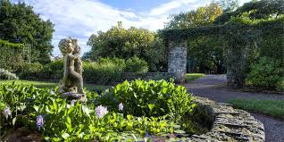Bermuda Botanical Gardens Sensory Garden Cherub Botanical Gardens Bermuda Traverse Earth