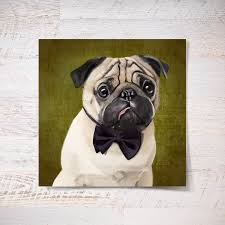 pug portrait on time magazine cover poster 12x16 or 20x28