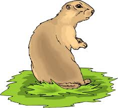 prairie dog coloring page free prairie dog clipart