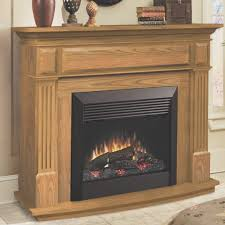 fireplace amazing dimplex electric fireplace insert home depot