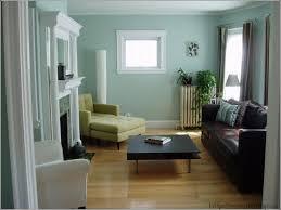 Livingroom Color Ideas Nice Living Room Paint Colors