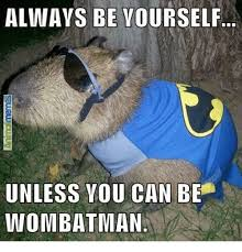 Wombat Memes - always be yourself unless you can be wombat man meme on sizzle