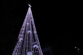 Christmas Tree Made Of Christmas Lights - australia u0027s most talked about christmas trees abc radio australia