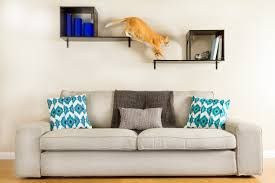 articles with diy stylish cat tree tag stylish cat tree images