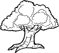 how to draw trees with easy step by step drawing tutorial