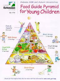 food pyramid for kids by barb struempler health u0026 wellness
