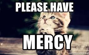 Good Luck Cat Meme - please have mercy good luck cat meme generator