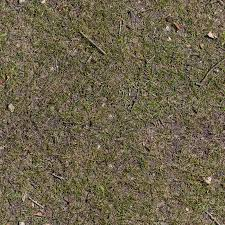 ground textures dry grass texture free textures for 3d