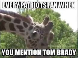 Patriots Fan Meme - lmao giraffe giving bj to a pole acting like every new england