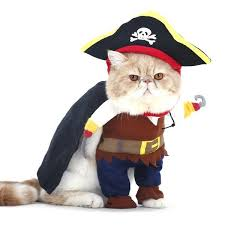 pirate cat costume meowingtons