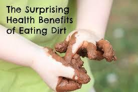 edible white dirt 7 surprising health benefits of dirt babble